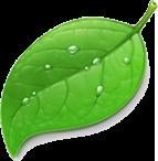Coda er lansert i Mac App Store